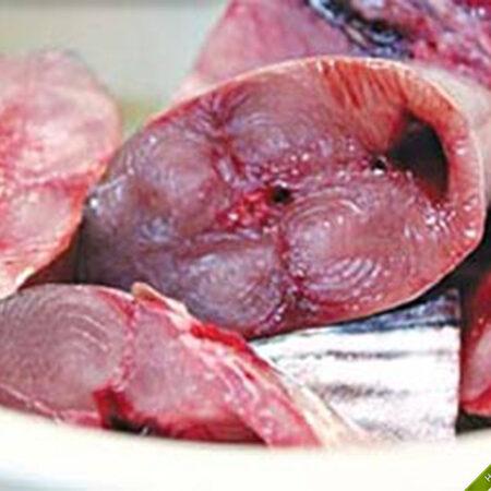 Cung cấp cá ngừ đại dương cho quán ăn, nhà hàng