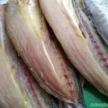 Khô cá Nhòng 1 nắng